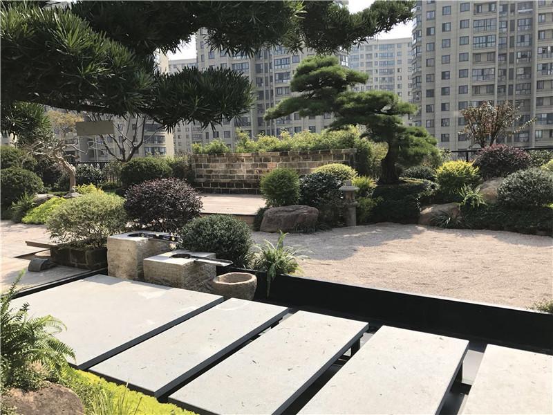 时间国际•办公楼屋顶花园景观