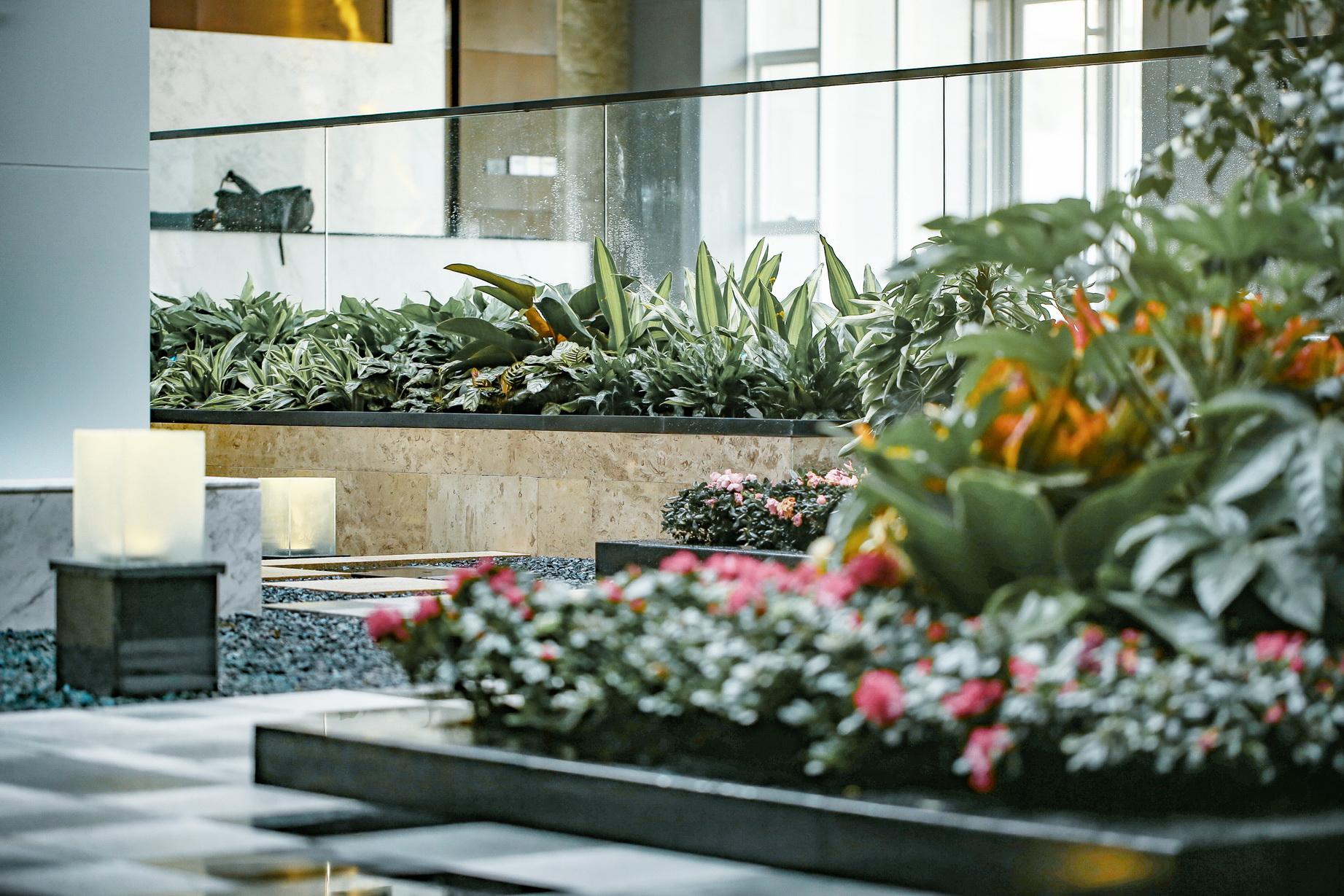 办公中庭花园